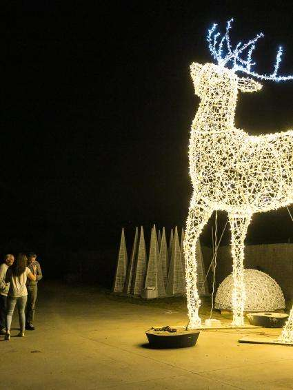 Decorazioni di natale luminose led